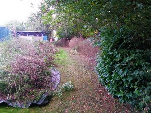 Leichte Gartenarbeit2