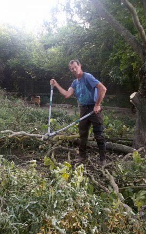 Leichte Gartenarbeit3