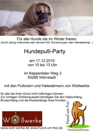 pulli-party