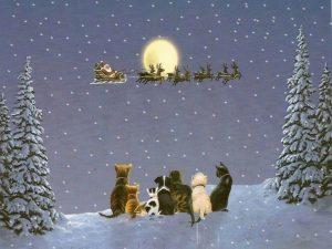 weihnachten-16-1